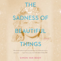 The Sadness of Beautiful Things Cover