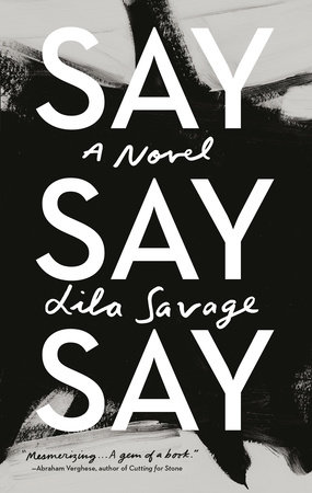 Image result for Say Say Say: A Novel