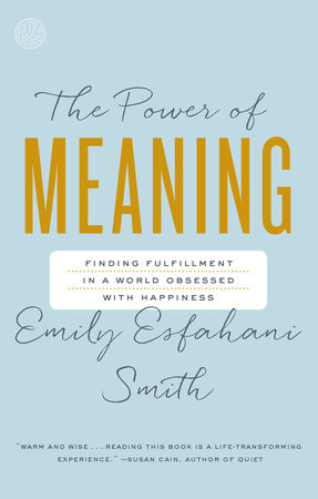 The cover of the book The Power of Meaning