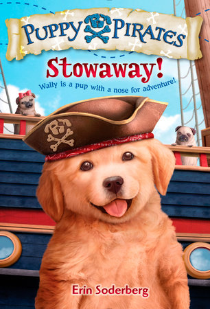 Puppy Pirates #1: Stowaway! by Erin Soderberg