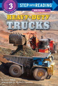 Heavy-Duty Trucks