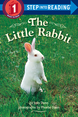 THE LITTLE RABBIT by Judy Dunn