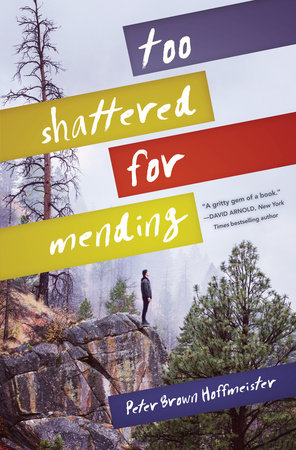 Too Shattered for Mending by Peter Brown Hoffmeister