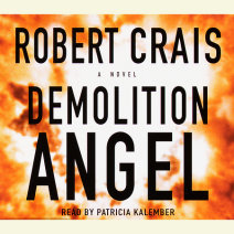 Demolition Angel Cover