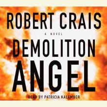 Demolition Angel Cover