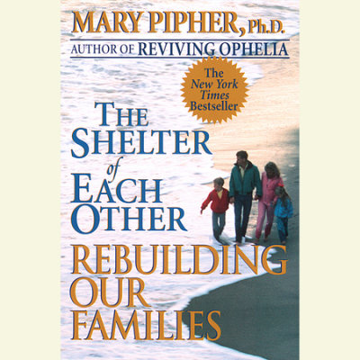 The Shelter of Each Other cover