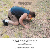 In Persuasion Nation Cover