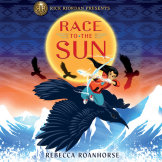 Race to the Sun cover small