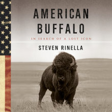 American Buffalo Cover