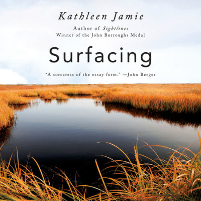 Surfacing cover