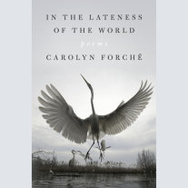 In the Lateness of the World Cover