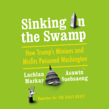 Sinking in the Swamp Cover