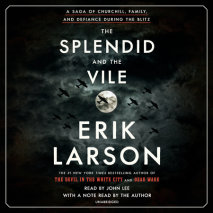 The Splendid and the Vile cover big
