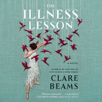 The Illness Lesson cover