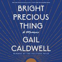 Bright Precious Thing Cover