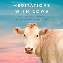 Meditations with Cows Cover