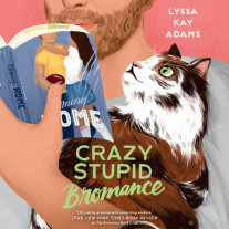 Crazy Stupid Bromance Cover