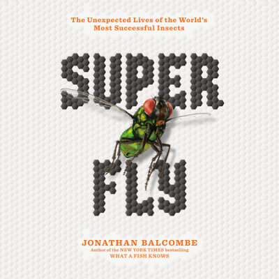 Super Fly cover