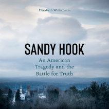 Sandy Hook Cover