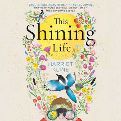 This Shining Life cover