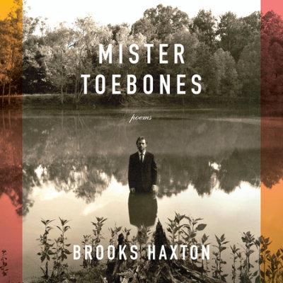 Mister Toebones cover