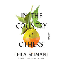 In the Country of Others Cover