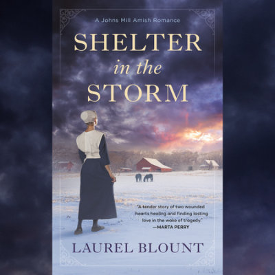 Shelter in the Storm cover