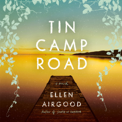Tin Camp Road cover