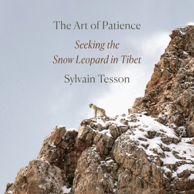 The Art of Patience cover