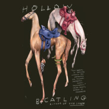 Hollow Cover