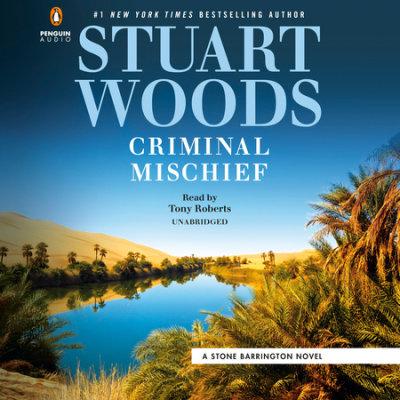 Criminal Mischief cover