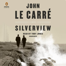 Silverview Cover