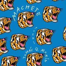 Machete Cover