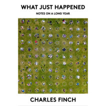 What Just Happened Cover