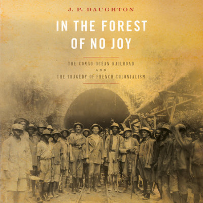 In the Forest of No Joy cover