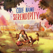 Code Name: Serendipity Cover