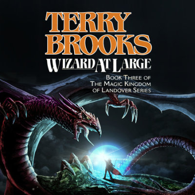 Wizard at Large cover