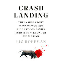 Crash Landing Cover