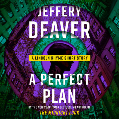 A Perfect Plan cover