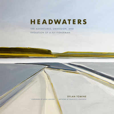 Headwaters cover