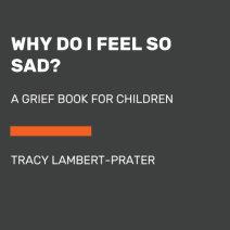 Why Do I Feel So Sad? Cover