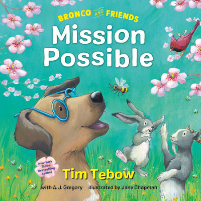 Bronco and Friends: Mission Possible cover