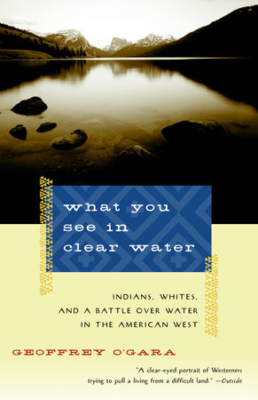 What You See in Clear Water by Geoffrey O'Gara
