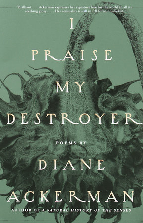 I Praise My Destroyer