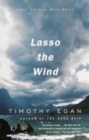 Lasso the Wind