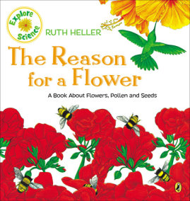 The Reason for a Flower