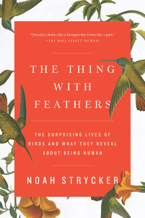 The Thing with Feathers by Noah Strycker