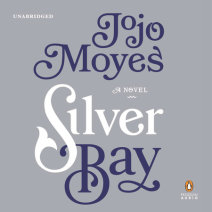 Silver Bay Cover