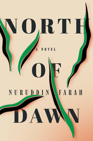 The cover of the book North of Dawn