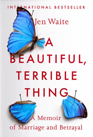 The cover of the book A Beautiful, Terrible Thing